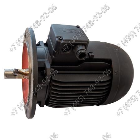 Мотор 220 В арт. 3008408 для горелок Riello